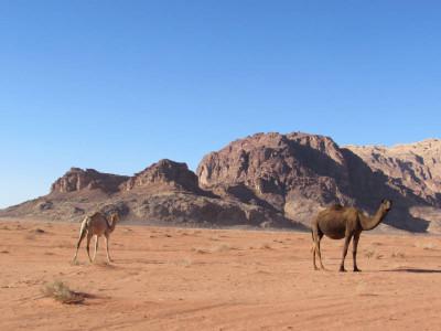 jordanien-trekking-wadi-rum